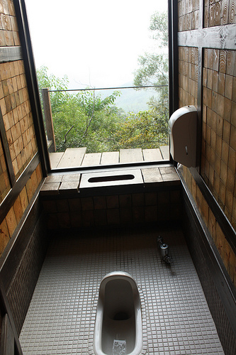 Would you use this bathroom? (Heh I did!)